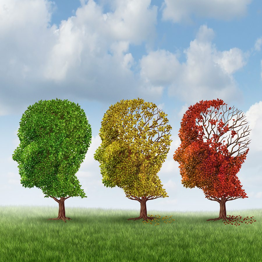 Elderly Care in Petaluma CA: Middle Stage Alzheimer's
