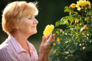 Senior Care Sonoma CA - Learn How to Create a Tranquil Garden Area for Easing Stress